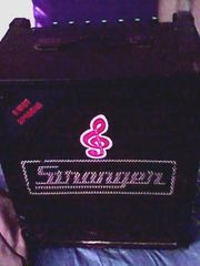 Stranger amplifier-80 watts RMS- 2 channels for sale